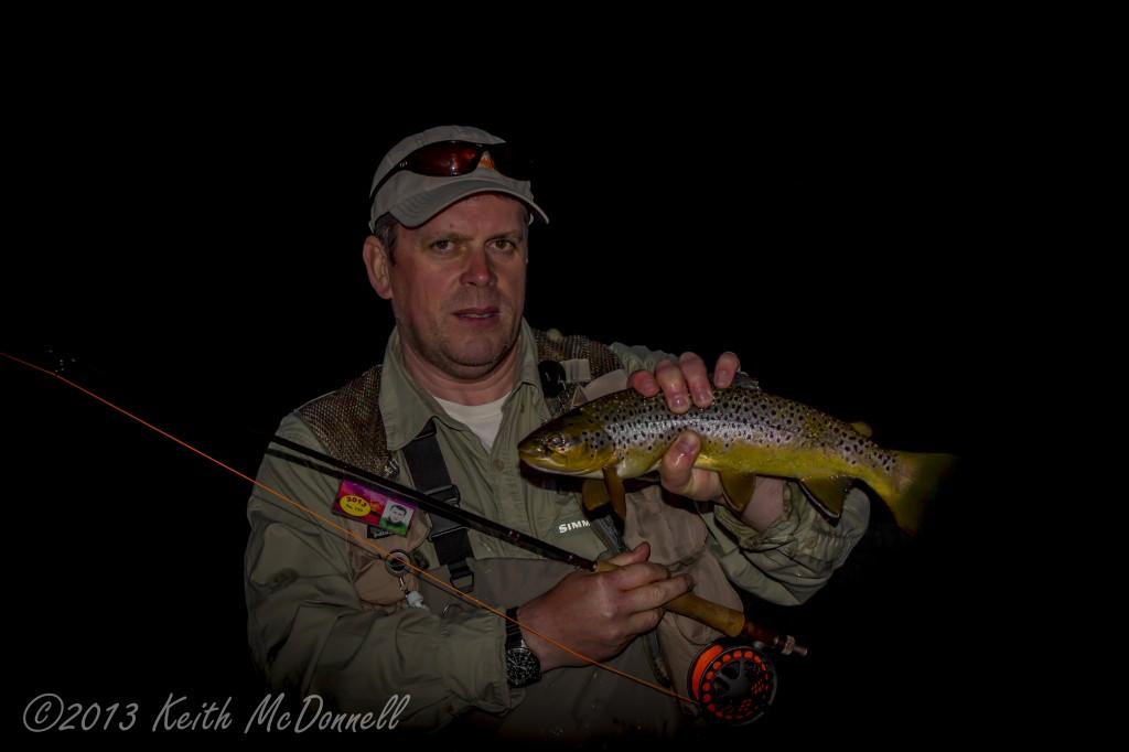 wild irish trout