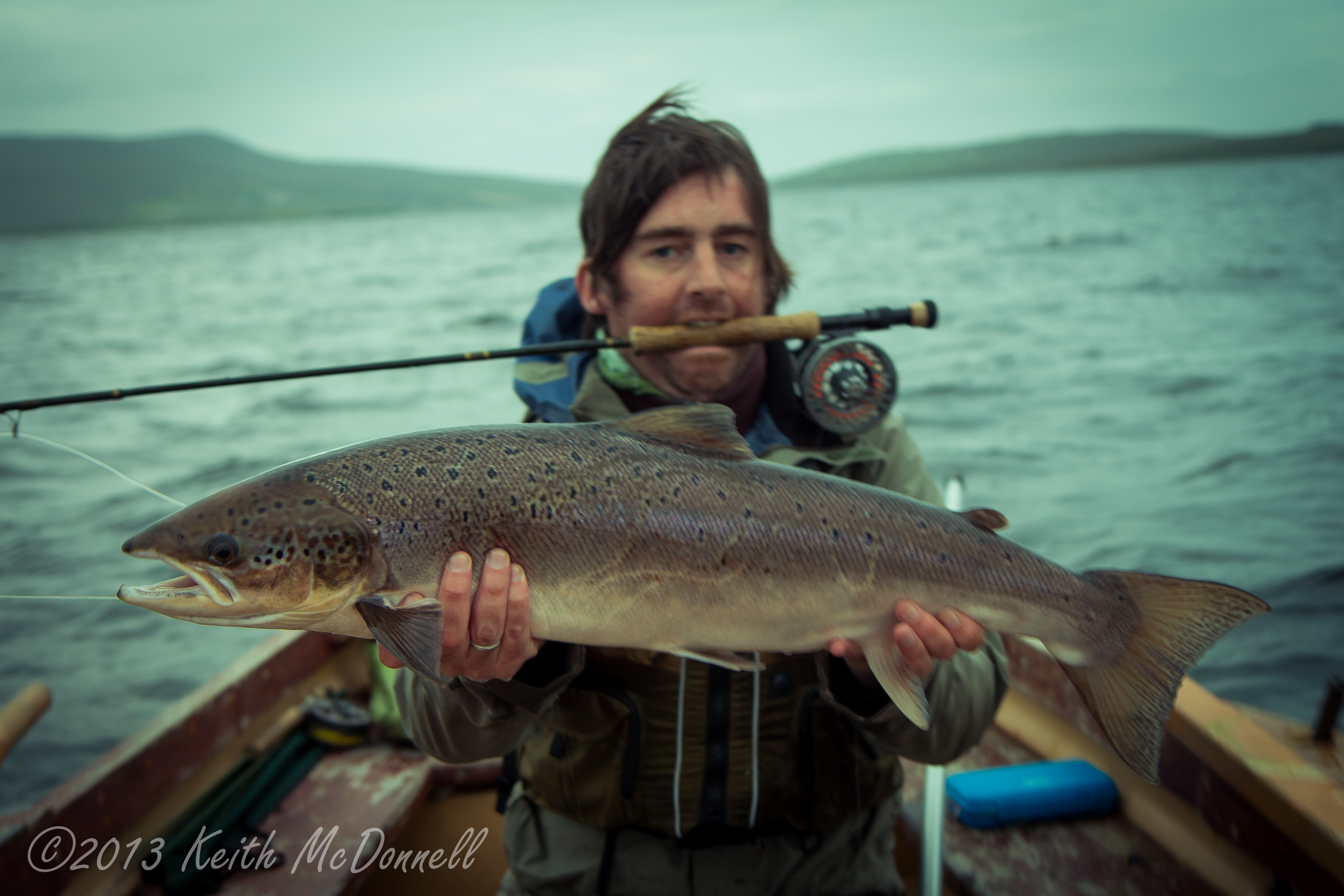 Atlantic Salmon fishing Ireland