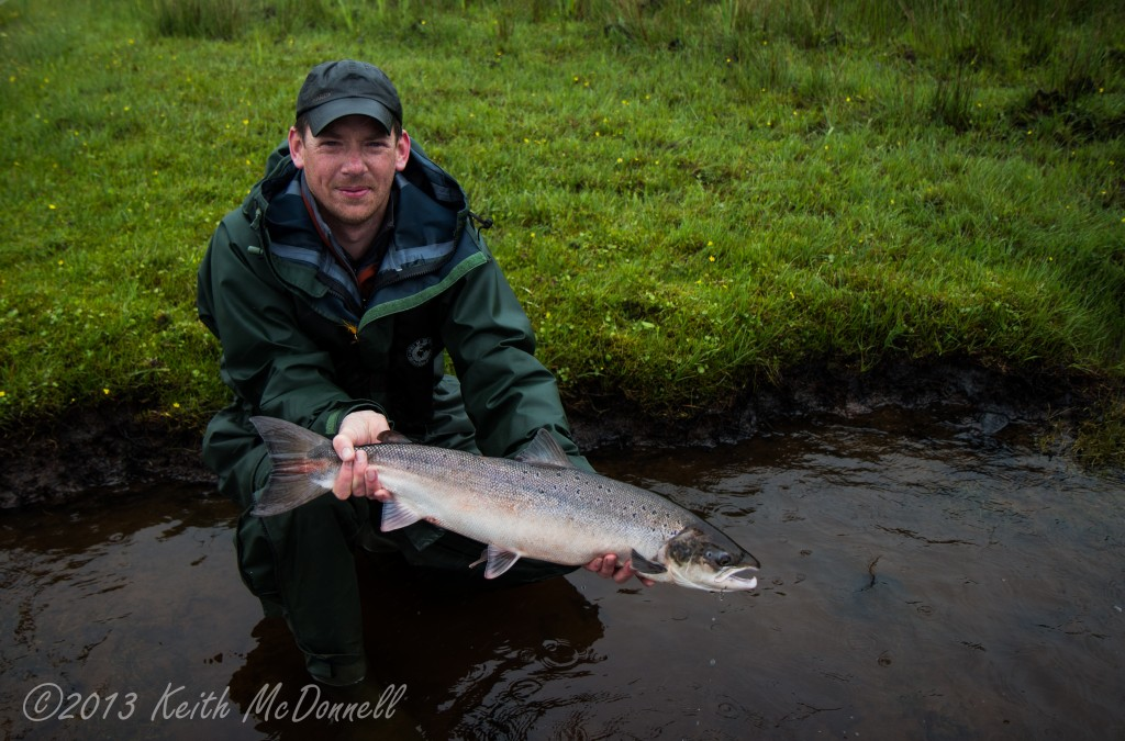 Spring Salmon Carrowmore Lake Ireland