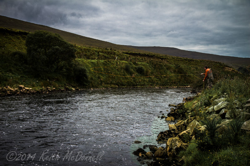 salmon fishing ireland
