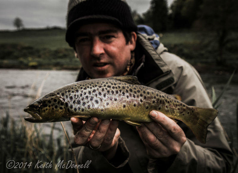 fly fishing for trout dublin