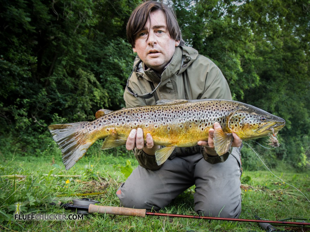 large boyne trout