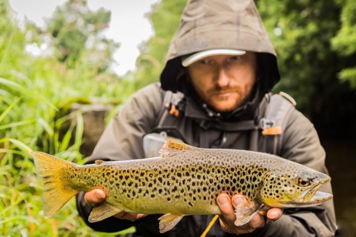 big trout irish river 2015